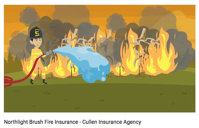 Cullen Insurance: Script for Advert